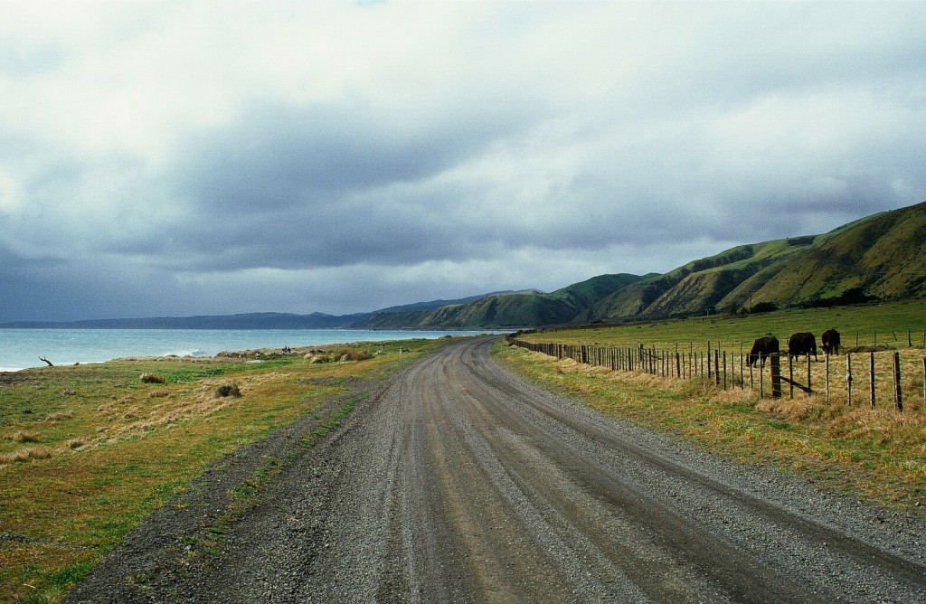 Neuseeland Roadtrip Cape Palliser
