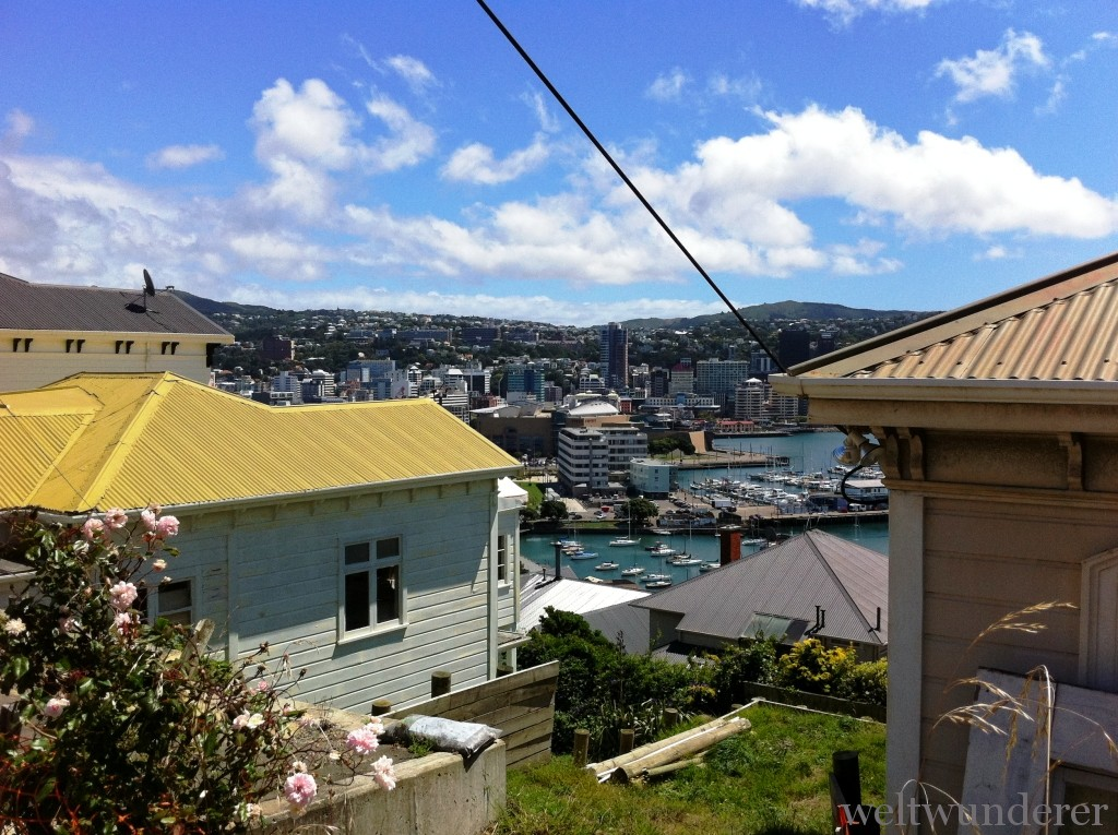 Wellington City Panorama