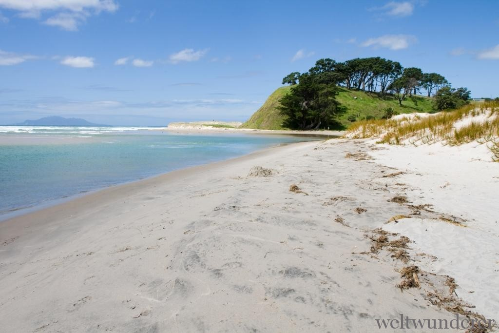 North Island Pakiri Beach