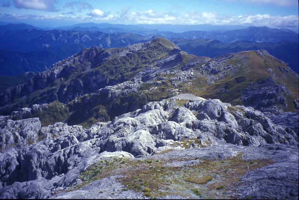 Mount Owen in Kahurangi National Park (c) Dru!/Flickr
