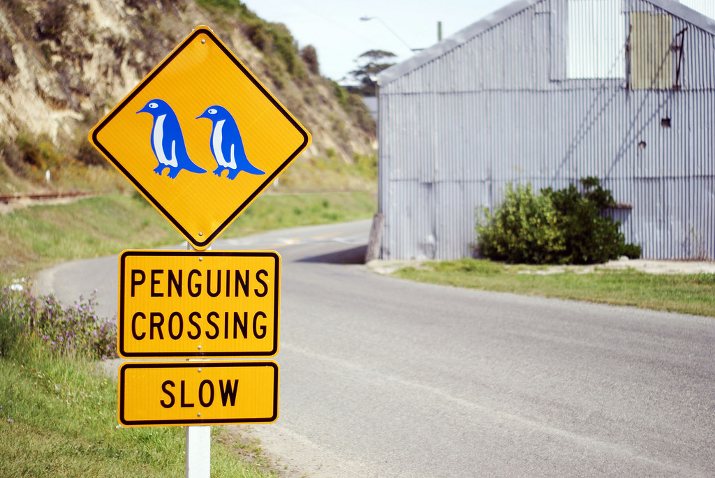 Penguin crossing road sign (c) FlickR/fras1977