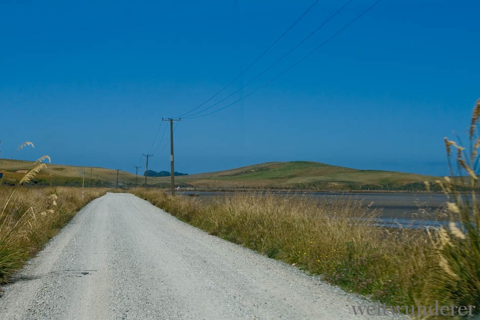 Gravel Roads in den Catlins