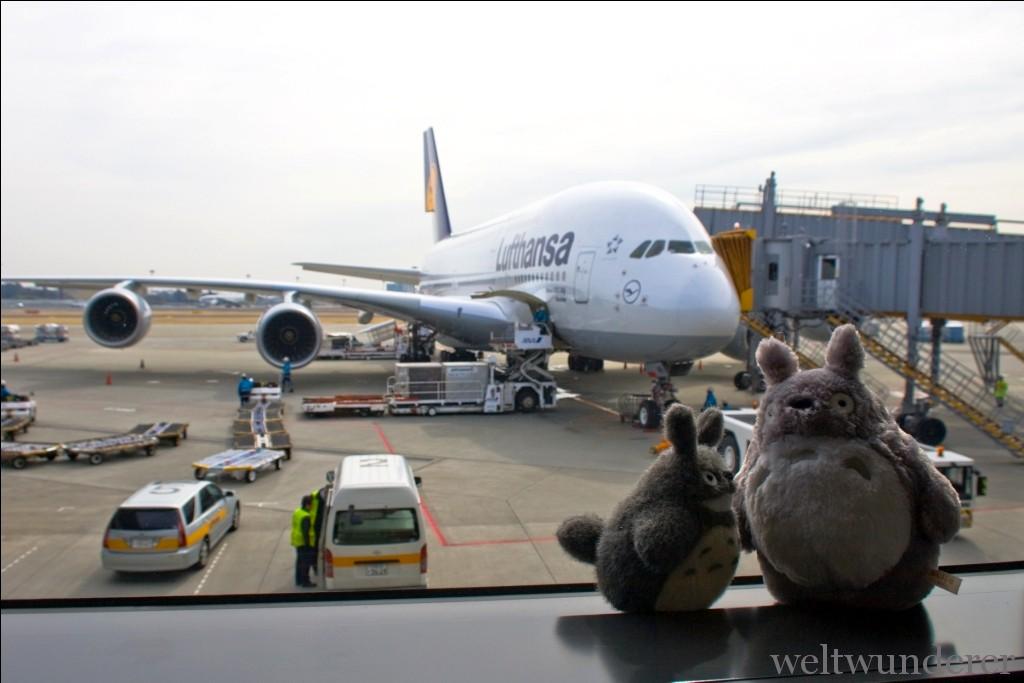 Weltwunderer Airport Narita
