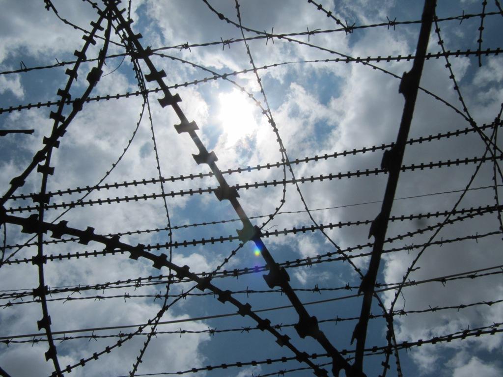 Weltwunderer Barb Wire