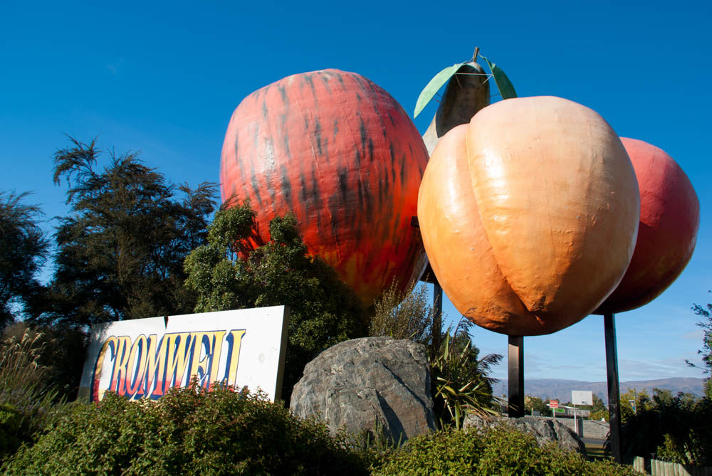 Neuseeland mit Baby Cromwell Obst