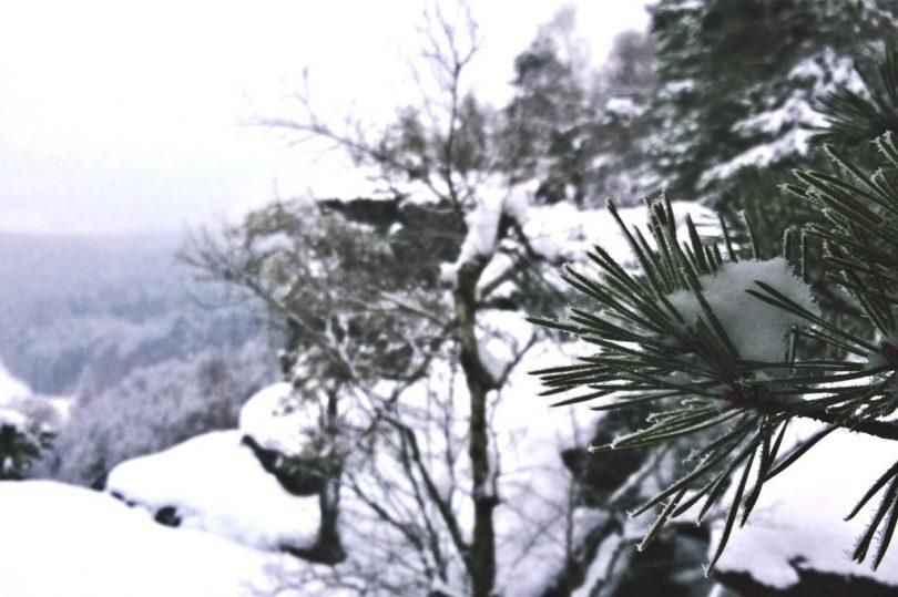 Winter Foto Show Sächsische Schweiz