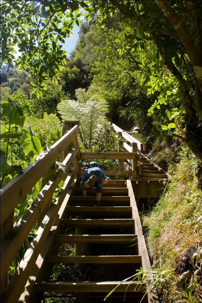 Wandern mit Kind in Neuseeland Karangahake Windows Walk
