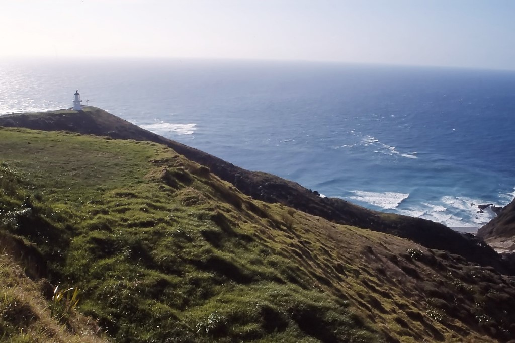 Neuseeland Roadtrip Cape Reinga