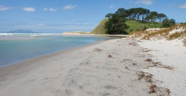 Sommer in Neuseeland Pakiri Beach