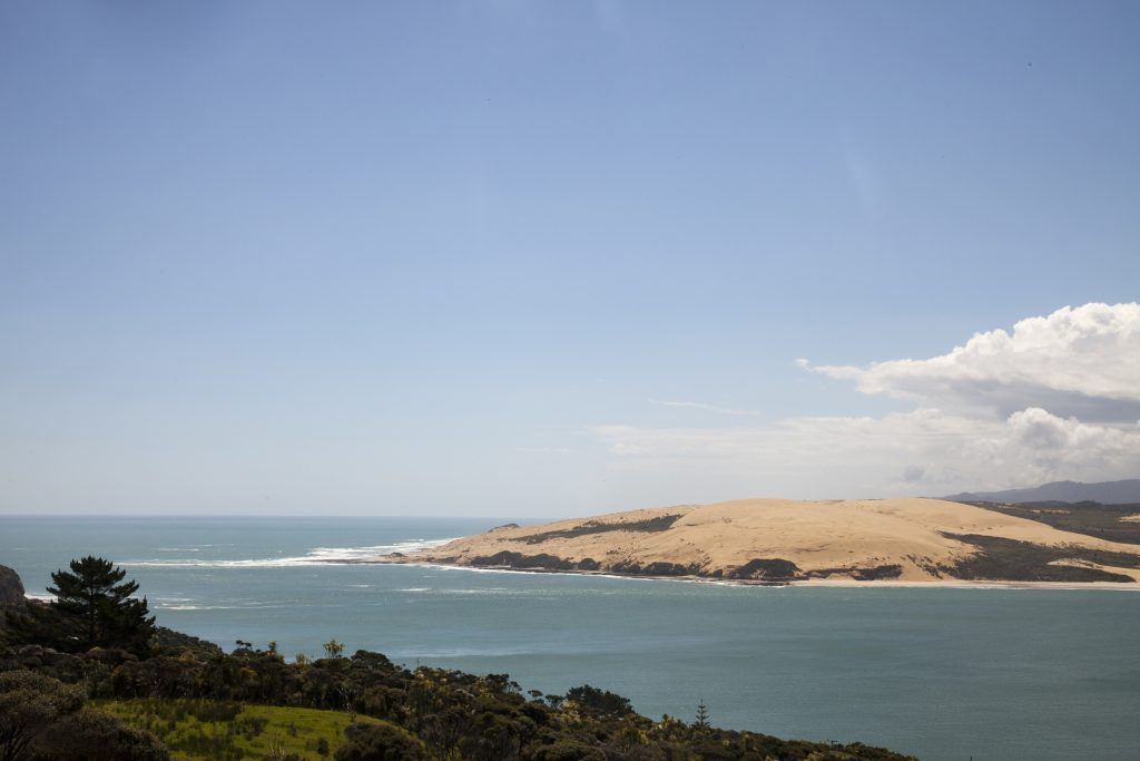 Hokianga Harbour Ken Downie TNZ