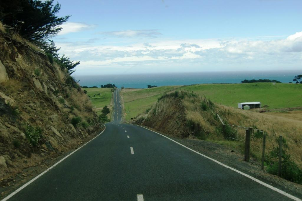 Roadtrip Neuseeland Otago Peninsula