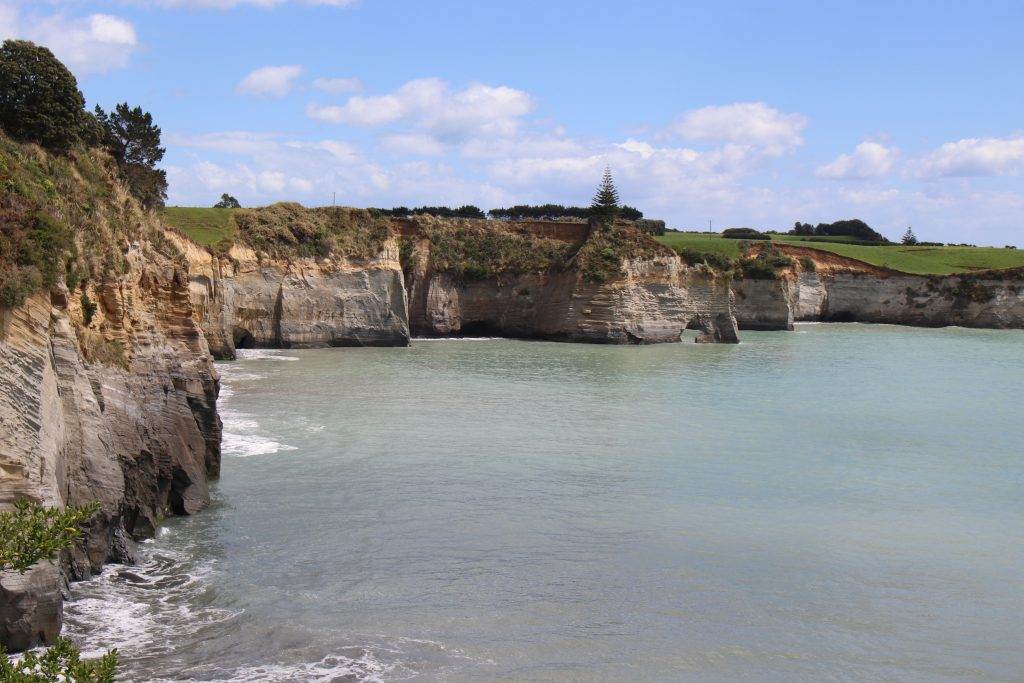 North Taranaki Whitecliffs