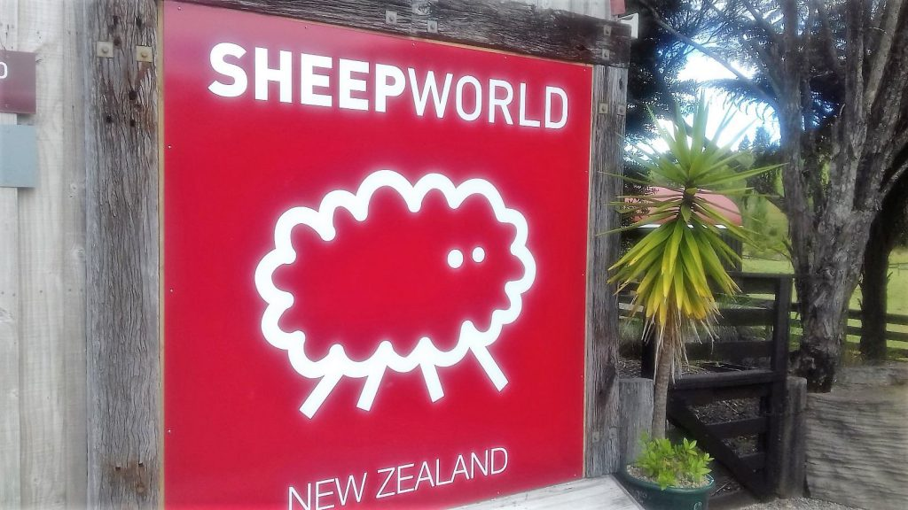 Sheep World Warkworth Schild