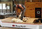 Sheep World Warkworth Show