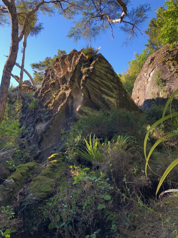 Wairere Boulders Neuseeland