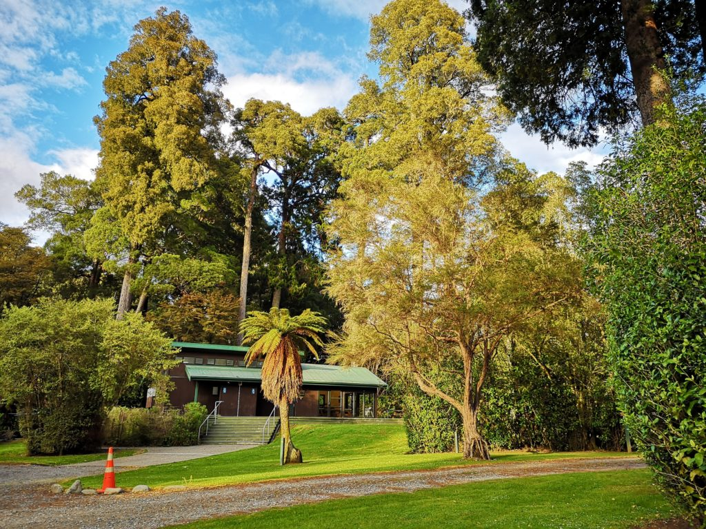 Pelorus River Camping Ground
