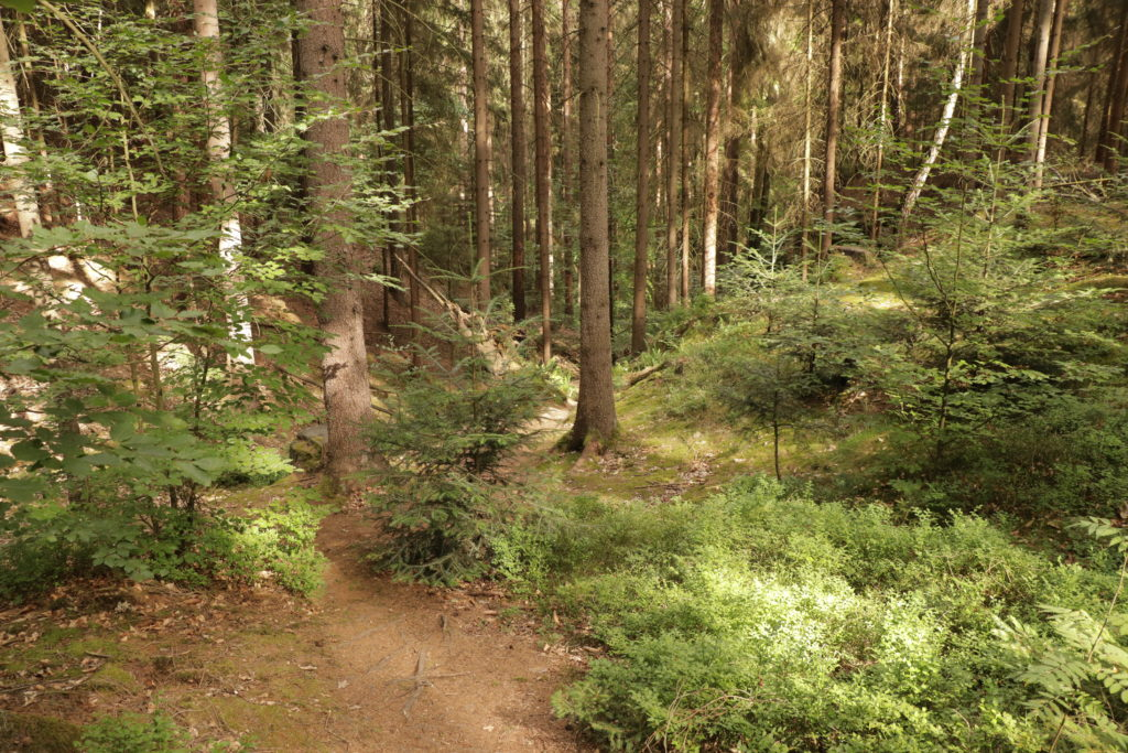 Malerweg Uttewalder Grund